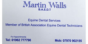 martin-walls